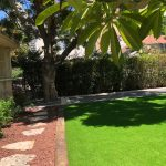 Our new garden 2019